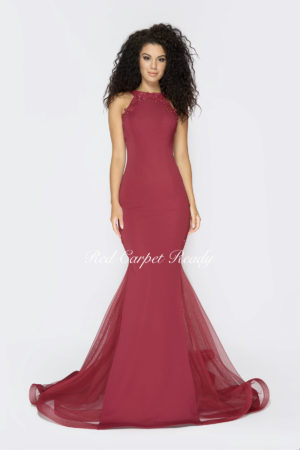Burgundy A-line bodycon dress with embroidery detailing and a high neckline.